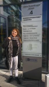 Randi Krogstad ved Høgskolen i Oslo og Akershus
